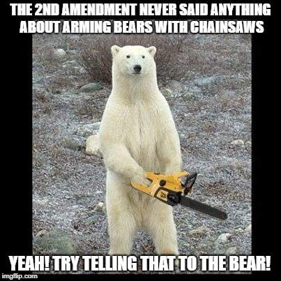 Chainsaw Bear Meme | THE 2ND AMENDMENT NEVER SAID ANYTHING ABOUT ARMING BEARS WITH CHAINSAWS YEAH! TRY TELLING THAT TO THE BEAR! | image tagged in memes,chainsaw bear | made w/ Imgflip meme maker