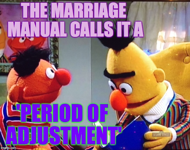 THE MARRIAGE MANUAL CALLS IT A 'PERIOD OF ADJUSTMENT' | made w/ Imgflip meme maker