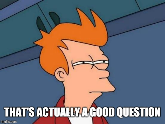 Futurama Fry Meme | THAT'S ACTUALLY A GOOD QUESTION | image tagged in memes,futurama fry | made w/ Imgflip meme maker