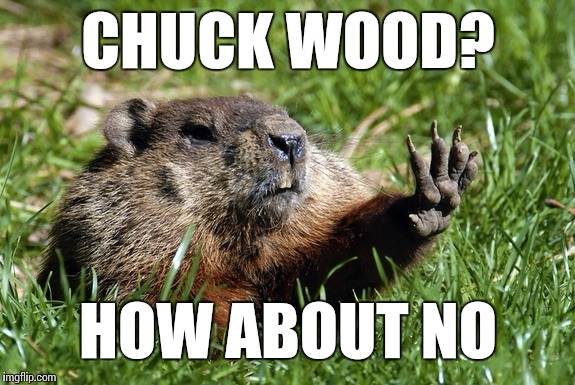 Chuck your own wood,Charlie | CHUCK WOOD? HOW ABOUT NO | image tagged in woodchuck nope,memes,woodchuck | made w/ Imgflip meme maker