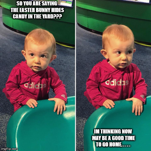 SO YOU ARE SAYING THE EASTER BUNNY HIDES CANDY IN THE YARD??? IM THINKING NOW MAY BE A GOOD TIME TO GO HOME. . . . . | image tagged in molly | made w/ Imgflip meme maker