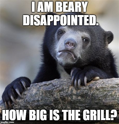 Confession Bear Meme | I AM BEARY DISAPPOINTED. HOW BIG IS THE GRILL? | image tagged in memes,confession bear | made w/ Imgflip meme maker