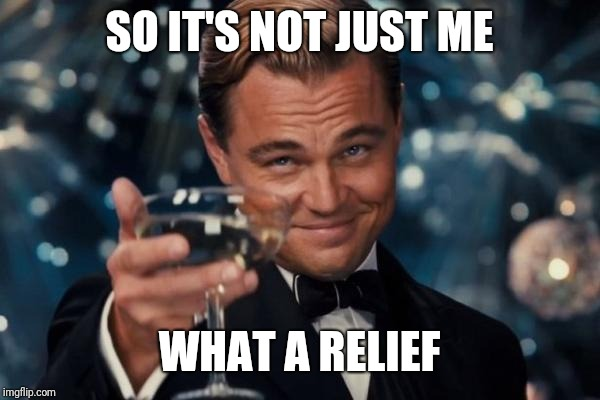 Leonardo Dicaprio Cheers Meme | SO IT'S NOT JUST ME WHAT A RELIEF | image tagged in memes,leonardo dicaprio cheers | made w/ Imgflip meme maker