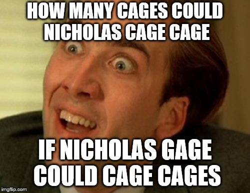 nic cage |  HOW MANY CAGES COULD NICHOLAS CAGE CAGE; IF NICHOLAS GAGE COULD CAGE CAGES | image tagged in nic cage | made w/ Imgflip meme maker
