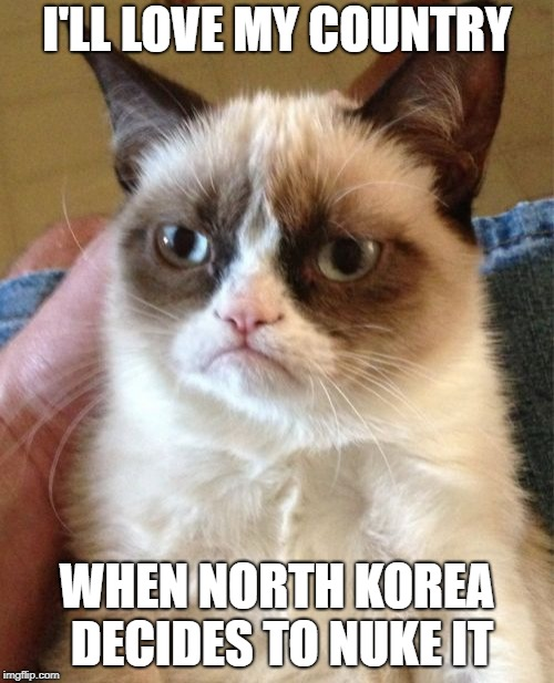 Grumpy Cat Meme | I'LL LOVE MY COUNTRY WHEN NORTH KOREA DECIDES TO NUKE IT | image tagged in memes,grumpy cat | made w/ Imgflip meme maker