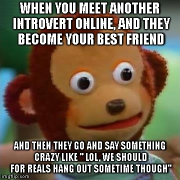 "TF you just say? | WHEN YOU MEET ANOTHER INTROVERT ONLINE, AND THEY BECOME YOUR BEST FRIEND AND THEN THEY GO AND SAY SOMETHING CRAZY LIKE "" LOL, WE SHOULD FOR  