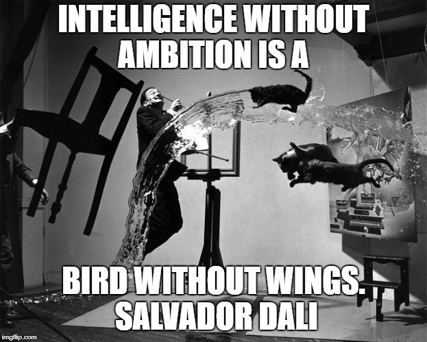 INTELLIGENCE WITHOUT AMBITION IS A BIRD WITHOUT WINGS. SALVADOR DALI | image tagged in salvador dali,intelligence,ambition,art | made w/ Imgflip meme maker