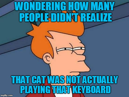 Futurama Fry Meme | WONDERING HOW MANY PEOPLE DIDN'T REALIZE THAT CAT WAS NOT ACTUALLY PLAYING THAT KEYBOARD | image tagged in bored keyboard cat,youtube | made w/ Imgflip meme maker