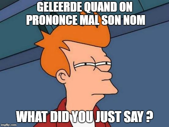 Futurama Fry Meme | GELEERDE QUAND ON PRONONCE MAL SON NOM WHAT DID YOU JUST SAY ? | image tagged in memes,futurama fry | made w/ Imgflip meme maker