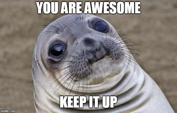 Awkward Moment Sealion Meme | YOU ARE AWESOME KEEP IT UP | image tagged in memes,awkward moment sealion | made w/ Imgflip meme maker