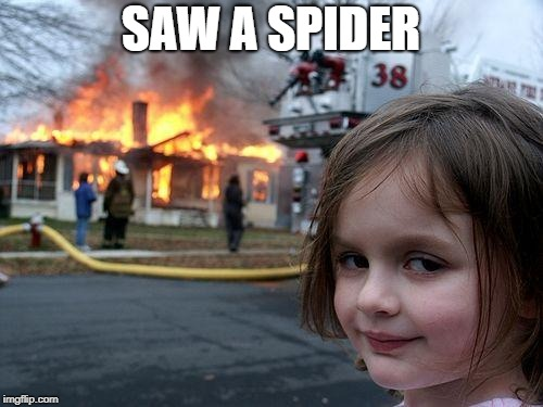 Drastic times require drastic measures | SAW A SPIDER | image tagged in memes,disaster girl,spider,funny,funny meme | made w/ Imgflip meme maker