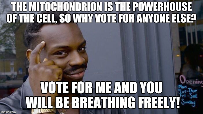 Roll Safe Think About It Meme | THE MITOCHONDRION IS THE POWERHOUSE OF THE CELL, SO WHY VOTE FOR ANYONE ELSE? VOTE FOR ME AND YOU WILL BE BREATHING FREELY! | image tagged in memes,roll safe think about it | made w/ Imgflip meme maker