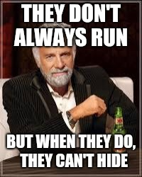 The Most Interesting Man In The World Meme | THEY DON'T ALWAYS RUN BUT WHEN THEY DO,  THEY CAN'T HIDE | image tagged in i don't always | made w/ Imgflip meme maker
