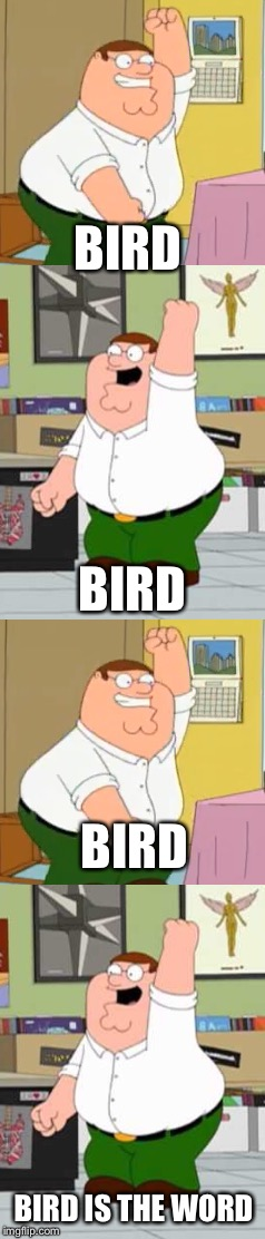 BIRD BIRD IS THE WORD BIRD BIRD | made w/ Imgflip meme maker