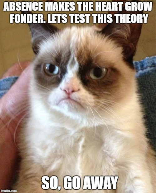 Grumpy Cat Meme | ABSENCE MAKES THE HEART GROW FONDER. LETS TEST THIS THEORY SO, GO AWAY | image tagged in memes,grumpy cat | made w/ Imgflip meme maker