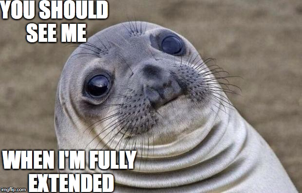 Awkward Moment Sealion Meme | YOU SHOULD SEE ME WHEN I'M FULLY EXTENDED | image tagged in memes,awkward moment sealion | made w/ Imgflip meme maker