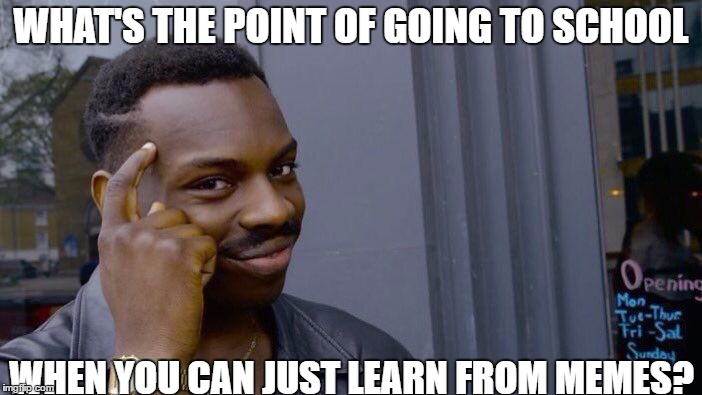 Roll Safe Think About It Meme | WHAT'S THE POINT OF GOING TO SCHOOL WHEN YOU CAN JUST LEARN FROM MEMES? | image tagged in memes,roll safe think about it | made w/ Imgflip meme maker