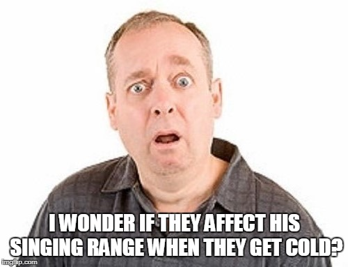 I WONDER IF THEY AFFECT HIS SINGING RANGE WHEN THEY GET COLD? | made w/ Imgflip meme maker
