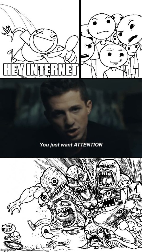 Hey Internet You Just Want Attention | HEY INTERNET | image tagged in memes,hey internet | made w/ Imgflip meme maker