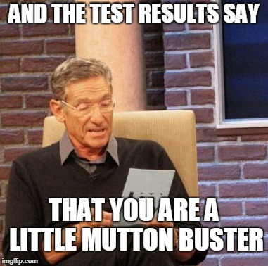 Maury Lie Detector Meme | AND THE TEST RESULTS SAY THAT YOU ARE A LITTLE MUTTON BUSTER | image tagged in memes,maury lie detector | made w/ Imgflip meme maker