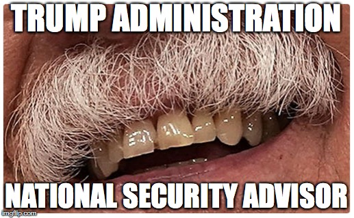 He is the Walrus | TRUMP ADMINISTRATION NATIONAL SECURITY ADVISOR | image tagged in donald trump,impeach trump | made w/ Imgflip meme maker
