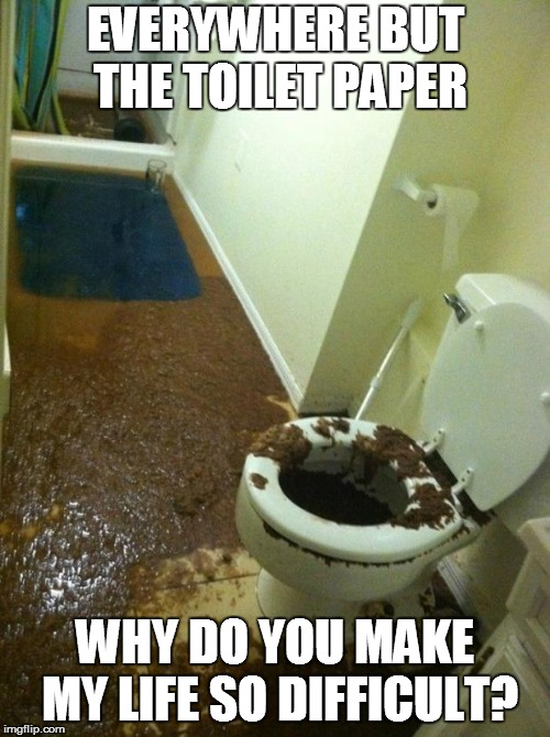 poop | EVERYWHERE BUT THE TOILET PAPER WHY DO YOU MAKE MY LIFE SO DIFFICULT? | image tagged in poop | made w/ Imgflip meme maker