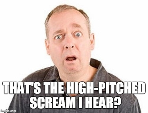 THAT'S THE HIGH-PITCHED SCREAM I HEAR? | made w/ Imgflip meme maker