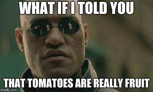 Matrix Morpheus Meme | WHAT IF I TOLD YOU THAT TOMATOES ARE REALLY FRUIT | image tagged in memes,matrix morpheus | made w/ Imgflip meme maker