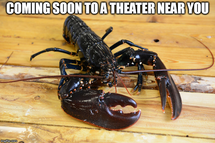 COMING SOON TO A THEATER NEAR YOU | made w/ Imgflip meme maker