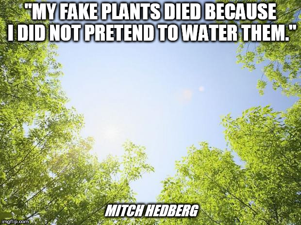 "sunshine trees | ""MY FAKE PLANTS DIED BECAUSE I DID NOT PRETEND TO WATER THEM."" MITCH HEDBERG 