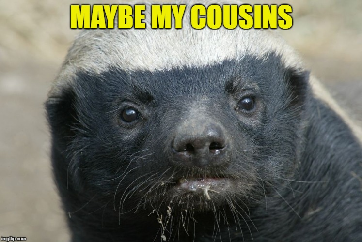 MAYBE MY COUSINS | made w/ Imgflip meme maker