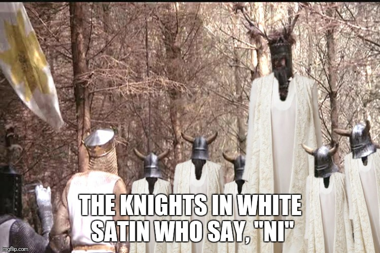 "THE KNIGHTS IN WHITE SATIN WHO SAY, ""NI"" 
