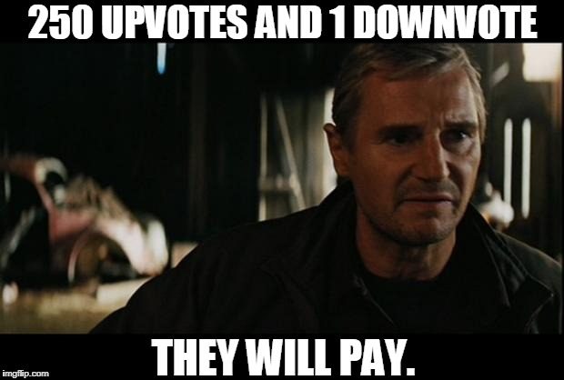 Liam Neeson | 250 UPVOTES AND 1 DOWNVOTE THEY WILL PAY. | image tagged in liam neeson | made w/ Imgflip meme maker