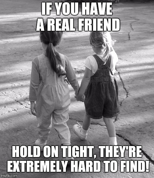 Best Friends  | IF YOU HAVE A REAL FRIEND HOLD ON TIGHT, THEY'RE EXTREMELY HARD TO FIND! | image tagged in best friends | made w/ Imgflip meme maker