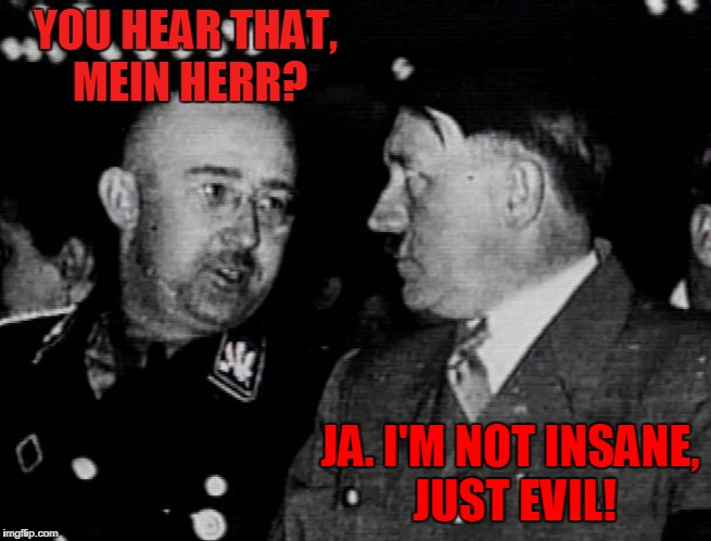 Grammar Nazis Himmler and Hitler | YOU HEAR THAT, MEIN HERR? JA. I'M NOT INSANE, JUST EVIL! | image tagged in grammar nazis himmler and hitler | made w/ Imgflip meme maker