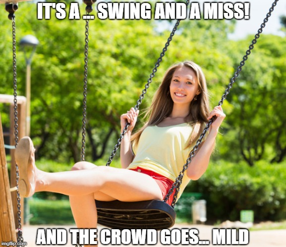 Here's the pitch | IT'S A ... SWING AND A MISS! AND THE CROWD GOES... MILD | image tagged in memes | made w/ Imgflip meme maker