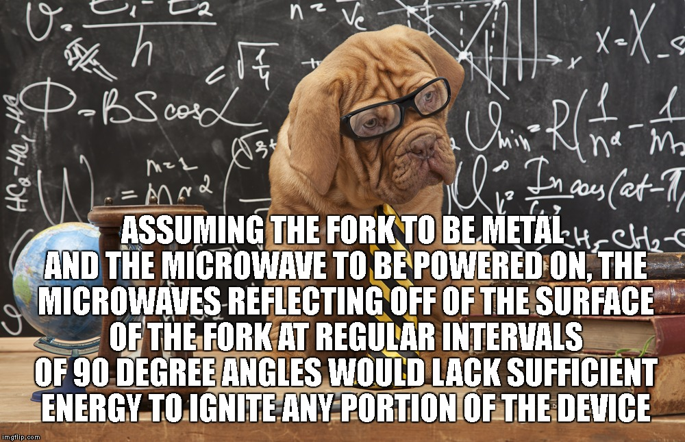 ASSUMING THE FORK TO BE METAL AND THE MICROWAVE TO BE POWERED ON, THE MICROWAVES REFLECTING OFF OF THE SURFACE OF THE FORK AT REGULAR INTERV | made w/ Imgflip meme maker