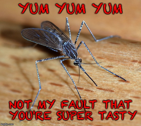YUM YUM YUM NOT MY FAULT THAT YOU'RE SUPER TASTY | made w/ Imgflip meme maker