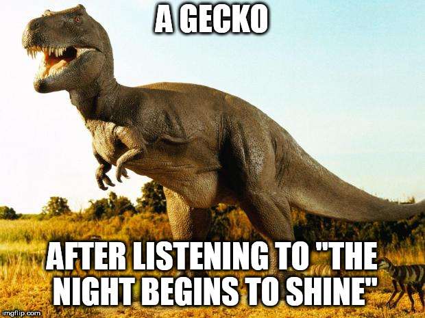 "T-Rex | A GECKO AFTER LISTENING TO ""THE NIGHT BEGINS TO SHINE"" 
