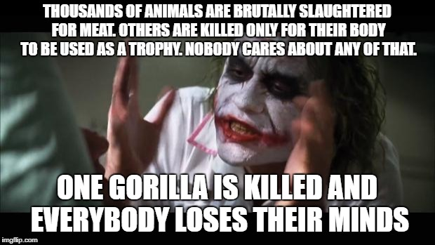 I Think Harambe's Fate Was Unjust And Cruel, But Everyone's Reaction Was Hypocritical Because Us Humans Treat ALL Animals Badly | THOUSANDS OF ANIMALS ARE BRUTALLY SLAUGHTERED FOR MEAT. OTHERS ARE KILLED ONLY FOR THEIR BODY TO BE USED AS A TROPHY. NOBODY CARES ABOUT ANY | image tagged in memes,and everybody loses their minds | made w/ Imgflip meme maker