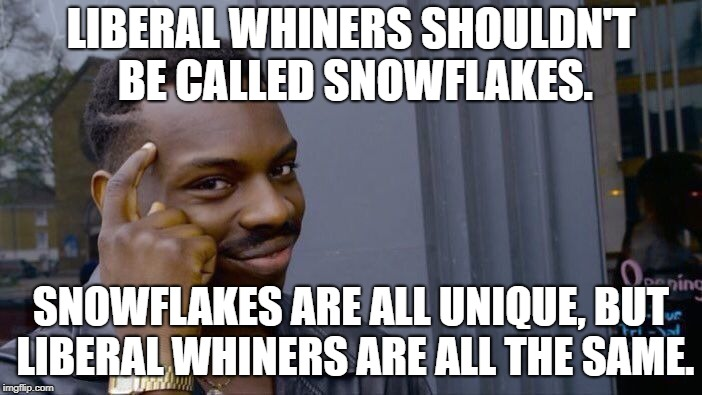 Let's use some logic here, people. | LIBERAL WHINERS SHOULDN'T BE CALLED SNOWFLAKES. SNOWFLAKES ARE ALL UNIQUE, BUT LIBERAL WHINERS ARE ALL THE SAME. | image tagged in memes,roll safe think about it | made w/ Imgflip meme maker
