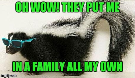 OH WOW! THEY PUT ME IN A FAMILY ALL MY OWN | made w/ Imgflip meme maker