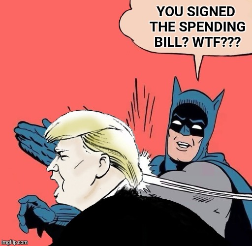 Batman slaps Trump | YOU SIGNED THE SPENDING BILL? WTF??? | image tagged in batman slaps trump,13 trillion dollar spending package,president trump | made w/ Imgflip meme maker