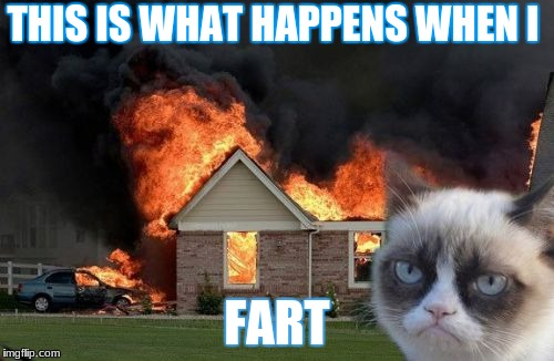 Burn Kitty | THIS IS WHAT HAPPENS WHEN I FART | image tagged in memes,burn kitty,grumpy cat | made w/ Imgflip meme maker
