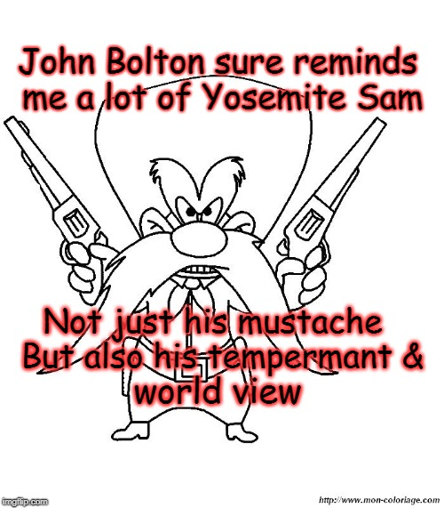 Yosemite Bolton |  John Bolton sure reminds me a lot of Yosemite Sam; Not just his mustache   But also his tempermant &; world view | image tagged in political | made w/ Imgflip meme maker