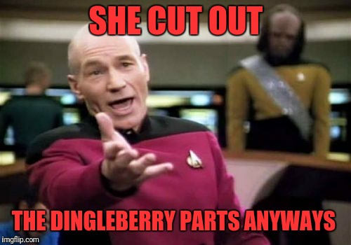 Picard Wtf Meme | SHE CUT OUT THE DINGLEBERRY PARTS ANYWAYS | image tagged in memes,picard wtf | made w/ Imgflip meme maker