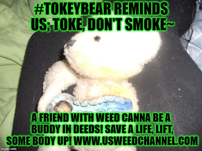 #TOKEYBEAR REMINDS US; TOKE, DON'T SMOKE~ A FRIEND WITH WEED CANNA BE A BUDDY IN DEEDS! SAVE A LIFE, LIFT, SOME BODY UP! WWW.USWEEDCHANNEL.C | image tagged in tokey bear shares care | made w/ Imgflip meme maker