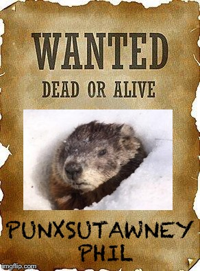 wanted dead or alive | PUNXSUTAWNEY PHIL | image tagged in wanted dead or alive | made w/ Imgflip meme maker