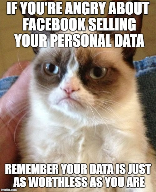 Grumpy Cat Meme | IF YOU'RE ANGRY ABOUT FACEBOOK SELLING YOUR PERSONAL DATA REMEMBER YOUR DATA IS JUST AS WORTHLESS AS YOU ARE | image tagged in memes,grumpy cat | made w/ Imgflip meme maker