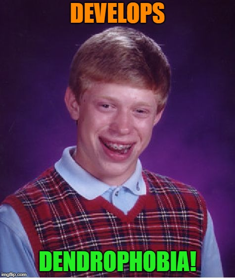 Bad Luck Brian Meme | DEVELOPS DENDROPHOBIA! | image tagged in memes,bad luck brian | made w/ Imgflip meme maker